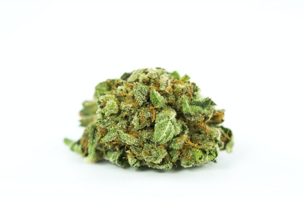 cannabis marketing agency flower picture