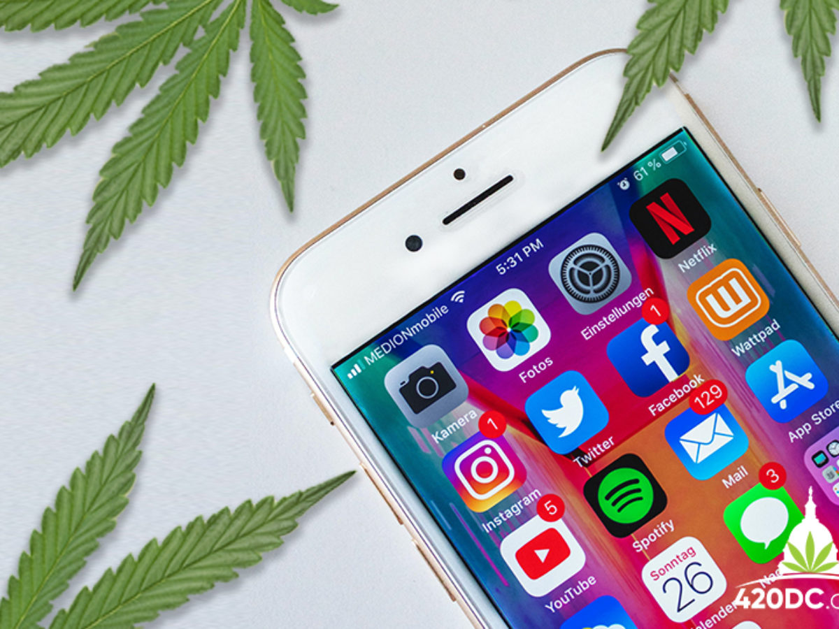 cannabis business social network cover photo